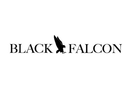 Sean Edwards Foundation working in collaboration with Black Falcon